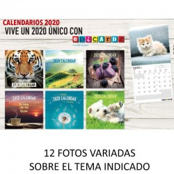 CALENDARIO DE PARED 2020...
