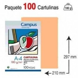 CARTULINA A4 COLOR CUERO...