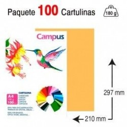 CARTULINA A4 COLOR CARNE...